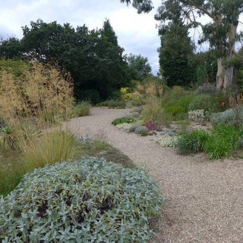 Garden design Designing a dry gravel garden Garden Design