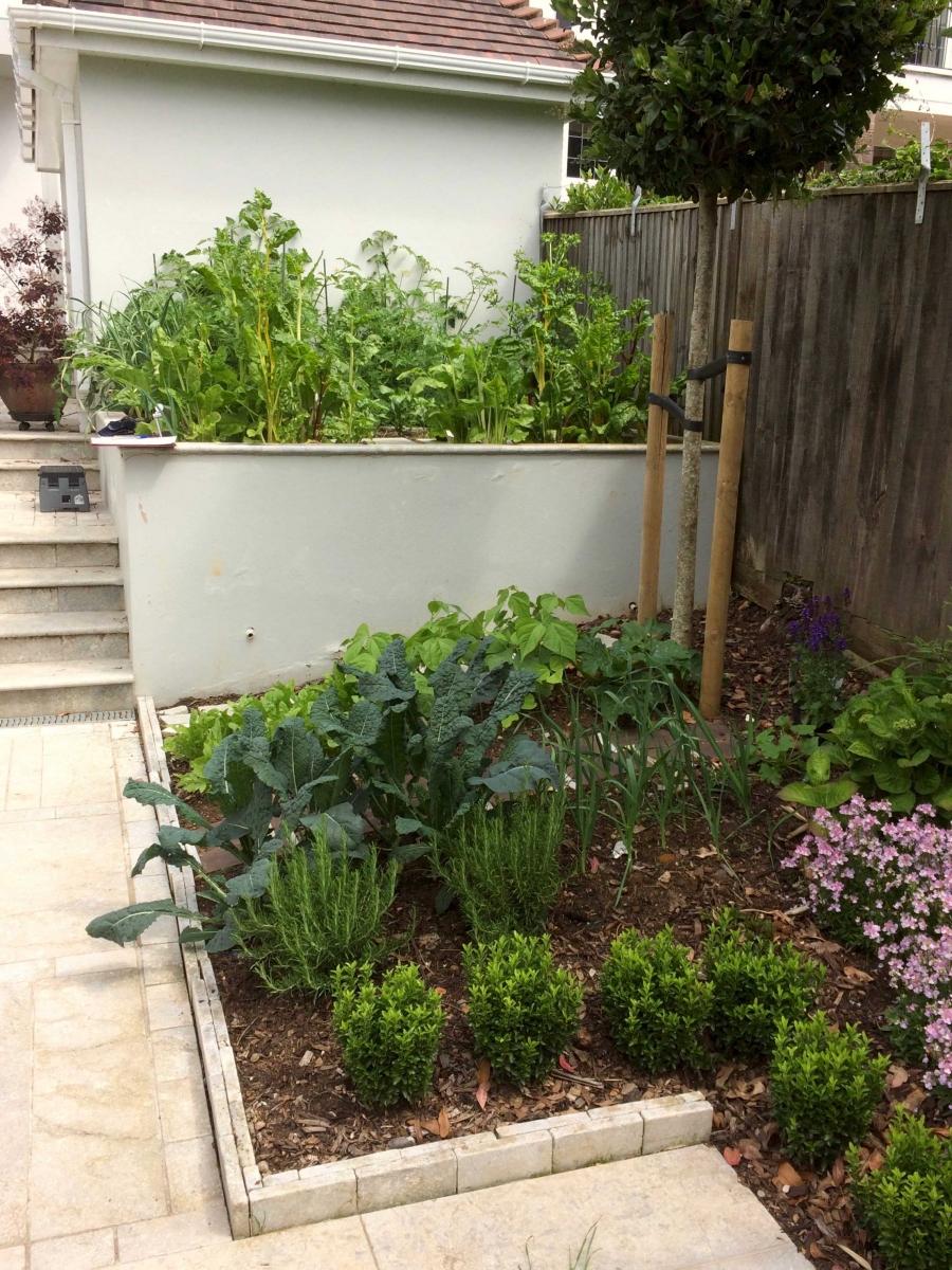Brighton Landscape Design | Sussex | Glorious Garden Sussex