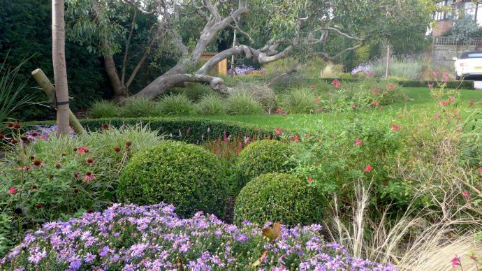 Landscape Designer brighton Sussex